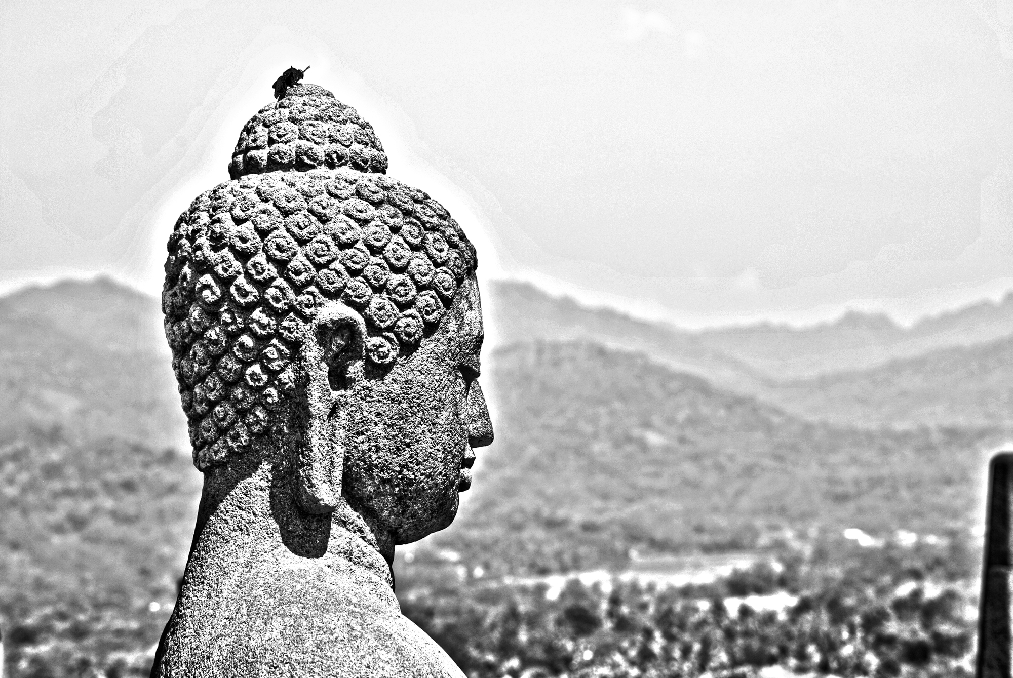 May All Beings Be Happy- 10 Days of Silence, a Lifetime of Happiness
